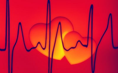 Cardiologists – Their Importance In Our World